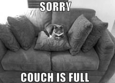cute captions 23 Daily Awww: Animals + captions = Awws and lols (28 photos)