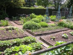 Serendipity Patch ~ simple raised beds