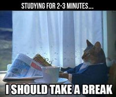 Tag somebody who studies for 2 minutes and takes a break ;)   more funny memes at:  gc.mes.fm/memes