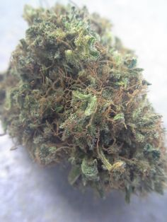 Durban Poison A sativa strain is very floral and citrus-y You'll feel energetic and creative!  *On Karma's shelves now* $9/g $15/1.75g $29/8th $56/7g $105/14g $190/0z