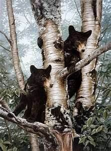 bear cubs painting images - Bing Images