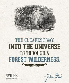 A quote from naturalist and conservationist John Muir.