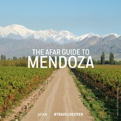"Mendoza, one of the ten great wine capitals of the world, has evolved into a world-class tourism destination. A desert oasis resting in the Argentinean foothills of the Andes mountain range, Mendoza has earned the moniker ""the land of sunshine and good wi Mendoza, Oh The Places You'll Go, Places To Travel, Uruguay Tourism, Patagonia, Argentina Travel, South America Travel, Desert Oasis, Vacation Trips"