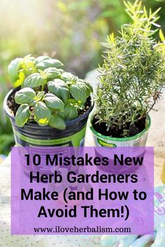 Great Informative Article to Read. Planning to grow herbs in your garden? Read this before doing anything with your herb gardening.