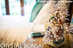 At www.crystalbonsai.com, we are dedicated to enhance your living space!