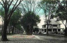 Princeton Illinois IL 1908 Homes West South Street Antique Vintage Postcard