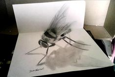 Jose A. – An Insect - This 3D drawing of insect even seems to be in motion, as its wings still flutter.