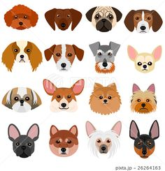dog tattoo Ideas Border Collie is part of Best Border Collie Tattoo Images Border Collie Art - small dog faces set on white background Animals And Pets, Cute Animals, Dog Quilts, Felt Dogs, Dog Crafts, Dog Illustration, Dog Pattern, Animal Faces, Dog Tattoos