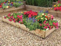 Raised Flower Beds - Raised Timber Gardens For Growing Flowers Raised Flower Beds, Raised Garden Beds, Raised Beds, Flower Bed Decor, Flower Bed Plants, Unique Flowers, Amazing Flowers, Diy Flowers, Landscaping With Rocks