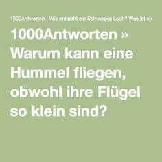 1000Antworten » Warum kann eine Hummel fliegen, obwohl ihre Flügel so klein sind?