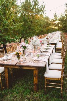 Long wedding table in The Peach Orchard | Photography : marymargaretsmith.com | http://www.fabmood.com/a-cozy-fall-wedding-in-the-peach-orchard #reception #fallwedding