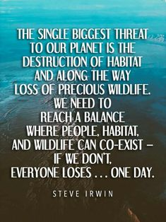 Save Planet Earth, Save Our Earth, Our Planet, Save The Planet, Environment Quotes, Good Environment, Quotes To Live By, Life Quotes, Wisdom Quotes