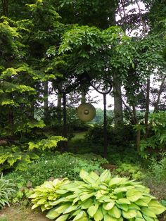 gong   temptation A Second Glimpse of Bedrock Gardens | Fine Gardening