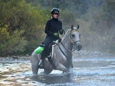 Endurance riding - I miss having a horse!