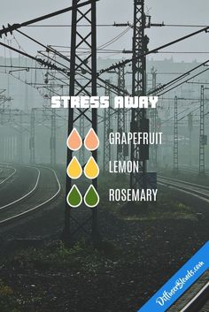 Stress Away - Essential Oil Diffuser Blend #Essentialoildiffusers