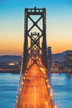 Hectic Bay Bridge by: Terence Leezy