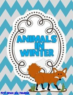 Animals in Winter--A Mini Unit - First Grade and Fabulous - TeachersPayTeachers.com