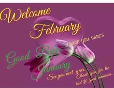 February is the month of love! Everyone celebrate the month with these beautiful pictures of February. We have 20 February images that you will love! New Month Greetings, New Month Wishes, February Images, February Quotes, Welcome February, Days In February, New Month Quotes, Daily Quotes, Life Quotes