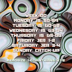 Week 80 Bible Reading Schedule, How To Plan