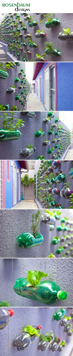 Click to visit the original post.innovative recyling, art and plants! Wow. How to have a garden when you have no lnad, just a wall.
