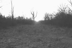 Mound Builders: Equinox Solar Alignment at the New Castle, Indiana Henge Site