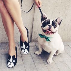 Frenchies are not fashion accessory...slippers are! www.frenchbulldogbreed.net