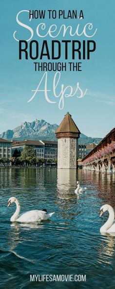 This easy, awesome Alps Roadtrip itinerary will take you through some of the most photogenic parts of Germany, Austria, and Switzerland's Alpine regions!  switzerland Tourism  Information on our Site   https://storelatina.com/switzerland/travelling #suiçaviagem #viagem #recipes #ferias