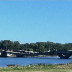 Puente . Punta del este