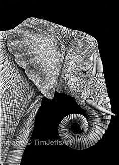 He encontrado este interesante anuncio de Etsy en https://www.etsy.com/es/listing/158031138/elephant-ink-drawing-signed-by-artist