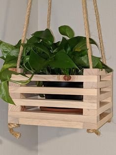Hanging planter made of beetle kill pine. Can be used indoors, fits a Terra pot and included with the hanging planter if requested! Hanger is in x in x in. Hanging Planter Boxes, Diy Wood Planters, Indoor Planters, Diy Hanging, House Plants Decor, Plant Decor, Decoration Plante, Diy Plant Stand, Diy Wood Projects