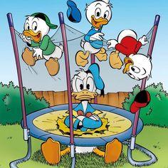 Disney Duck, Baby Disney, Disney Frozen, Duck Cartoon, Cartoon Art, Cartoon Characters, Tweety, Donald And Daisy Duck, Disney Clipart