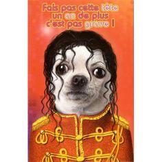 Carte Pets Rock Fais pas cette Tête un An de plus c'est pas Grave ! - Cadeau Maestro
