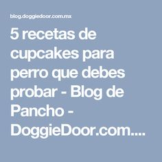 5 recetas de cupcakes para perro que debes probar - Blog de Pancho - DoggieDoor.com.mx