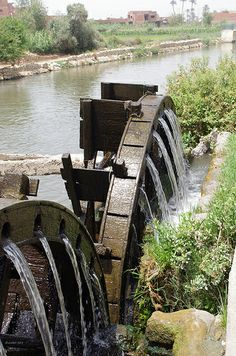 Waterwheels at Medinet el-Faiyum , Egypt Places Around The World, Around The Worlds, Old Grist Mill, Life In Egypt, Modern Egypt, Water Turbine, Hydroelectric Power, Water Wheels, Water Powers