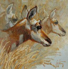 Young Buck, Palomino, Rodeo, Grass, Wildlife, Horses, Autumn, Artist, Artwork