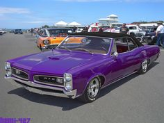 1966 Pontiac GTO ~~ Holy Cow, It's PURPLE!  reminds me of a friends car from years ago.