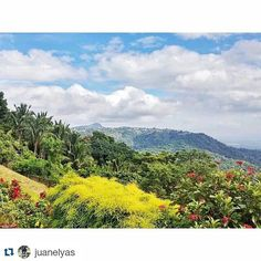 #Repost @juanelyas with @repostapp  Follow back for travel inspiration and tag your post with #talestreet to get featured.  Join our community of travelers and share your travel experiences with fellow travelers attalestreet.com  I've never seen Tagaytay as beautiful as this.. ctto:@mymoonluk  #talestreet #tagaytay #philippines #taal #taallake #itsmorefuninthephilippines #travel #volcano #nature #batangas #lake #rawtravel #wanderlust #crater #traveller #ilovenature #backpacking #traveling…