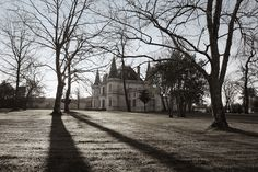 ©NICOLAS JOUBARD - Château Palmer