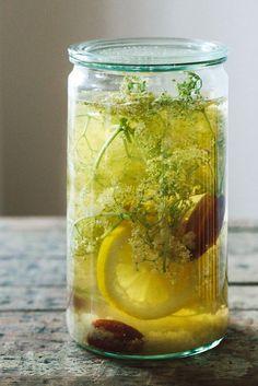 Wasser-Kefir Limonaden | KRAUTKOPF