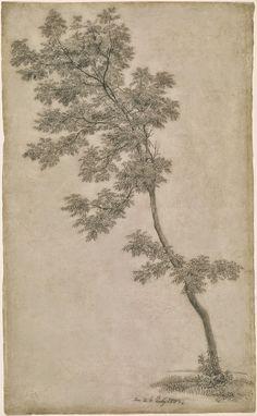 """cinderellahope: """" Caspar David Friedrich, 1803 """""""