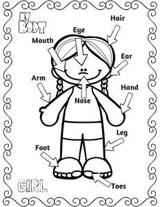 my body coloring book pages   witch worksheets for preschool   Human Body Coloring Pages ...