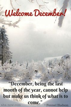 "Welcome, December! ""December, being the last month of the year, cannot help but make us think of what is to come."" ~ Fennel Hudson #quotes  #december  #AhaNOW #quoteoftheday #thoughts #sayings #newmonth  #wisewords #wordsofwisdom"