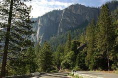 Yosemite CA