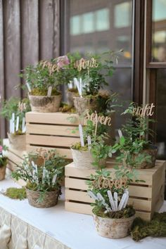 rustic potted plants wedding seating decor / http://www.himisspuff.com/potted-plants-wedding-decor-ideas/10/