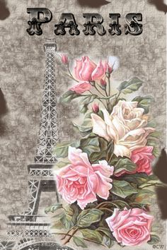 Paris Rose-omg I love this and I would print 2 cut out the flowers on 1 and put it on pop dots on the other!!