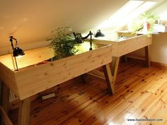 Indoor Tortoise tables | Flickr - Photo Sharing! @ http://www.flickr.com/photos/madeforanangel/6005152542/in/photostream/