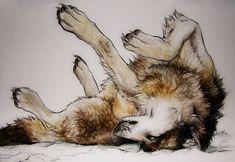 .:Wolf in Snow:. by =WhiteSpiritWolf on deviantART