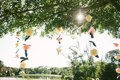 peach and ivory wedding decor