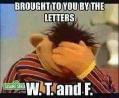 Yes Ernie, Trump is cutting PBS funding........