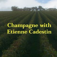 Watch the preview to this week's Semaine. With champagne expert Etienne Cadestin @sophieedelstein